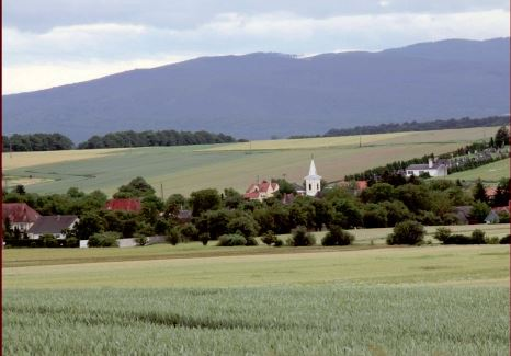 Buchpräsentation: Pannonien – Spuren einer Exkursion